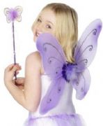 Girls Purple Butterfly Wings and Wand